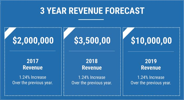 3 year revenue forecast