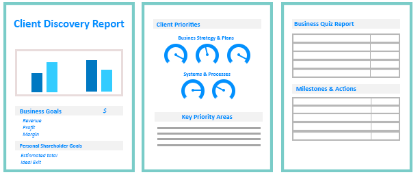 client discovery report
